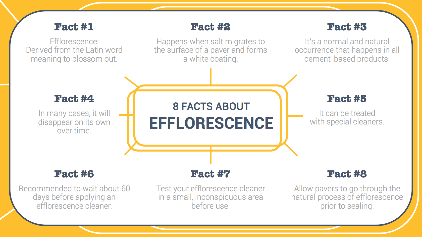 8_Facts_About_Efflorescence_Infographic