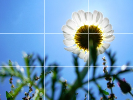 photography101_rule_of_thirds.jpg